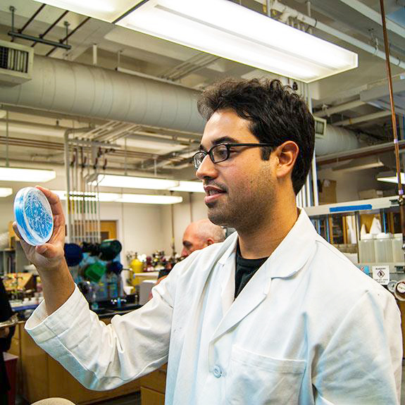 A researcher holding up a petri dish in a lab